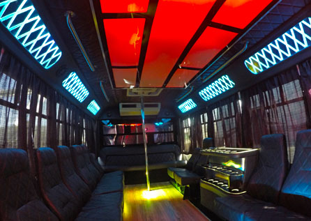 20 PERSON PARTY BUS